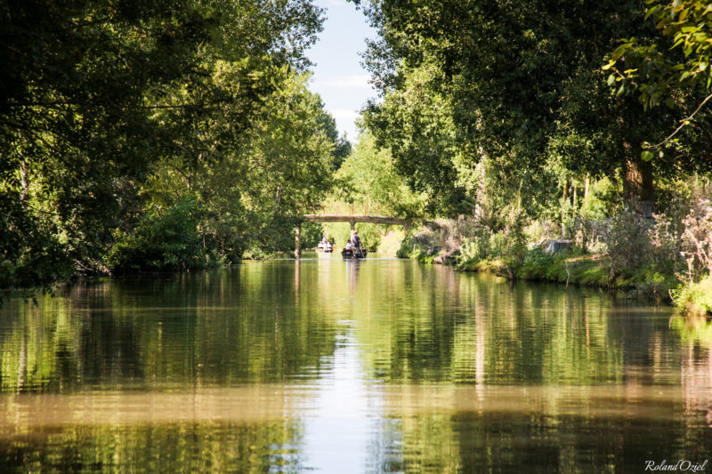 Réseau de canaux dans le Marais Poitevin